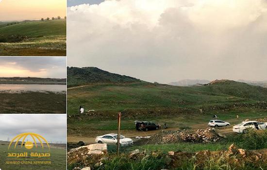 """شاهد.. """"الأخضر"""" يكسو أراضي فضاء وقمم التلال بعد هطول الأمطار في جدة!"""