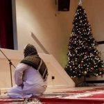 شاهد.. شجرة «كريسماس» داخل مسجد في مصر تثير جدلا واسعا!