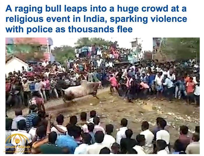 شاهد : ثور هائج يهاجم مئات من المؤمنين الهندوس أثناء احتفال ديني أمام معبد شهير بالهند