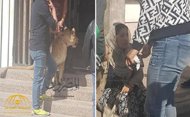 بالصور.. أسد يهاجم صحفية في مبنىالإذاعة والتلفزيون المصري