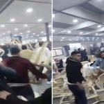 وسط صرخات النساء .. شاهد : حفل خطوبة في لبنان يتحول إلى معركة ضخمة