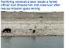 لحظة مرعبة بالهند .. شاهد : دب أسود  يطارد رجل ويسقطه في المياه ويفترسه !