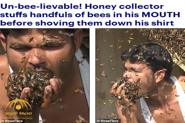 شاهد .. هندي يستعرض قوته ضد لسعات النحل ويلتهم المئات