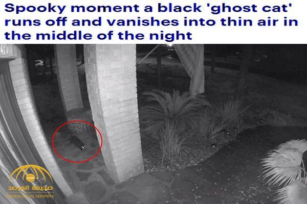 شاهد: عدسة كاميرا مراقبة بأحد المنازل في أمريكا ترصد شبح قطة سوداء يسير ليلاً – فيديو