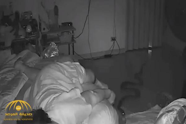 شاهد.. ثعبان يتسلل إلى غرفة سيدة ويلدغها وهي نائمة!