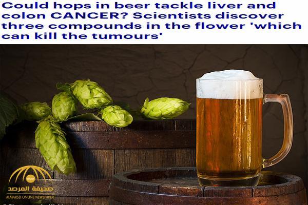 """تدخل في تصنيع """"البيرة"""" .. دراسة تكشف التأثير السحري لنبتة """"الهوبز"""" في قتل الخلايا السرطانية"""