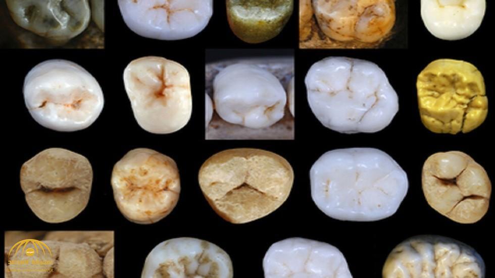 علماء يفجرون مفاجأة بشأن النظرية الشائعة لتطور الإنسان .. وهذا ما عثر عليه في كهف بإسبانيا
