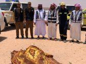 """ذهب للعمرة في 24 رمضان واختفى بشكل غامض.. العثور على """"مفقود وادي الدواسر"""" جثة هامدة (صورة)"""