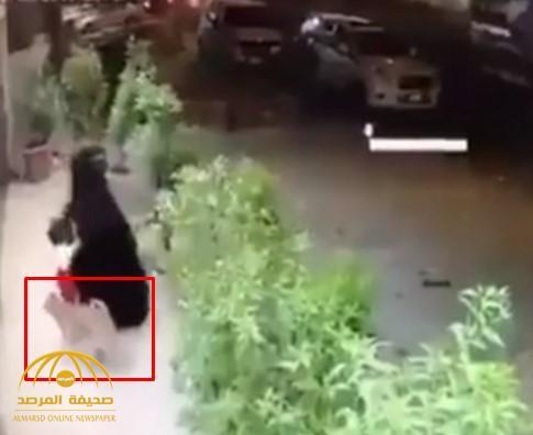 كلب ضال يهجم على طفلة في الشارع بأحد مناطق المملكة.. شاهد ردة فعل أمها (فيديو)