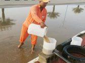 بالصور.. شاهد: كيف تصرف العمال للتخلص من مياه الأمطار بعد غياب المعدات في الشقيق
