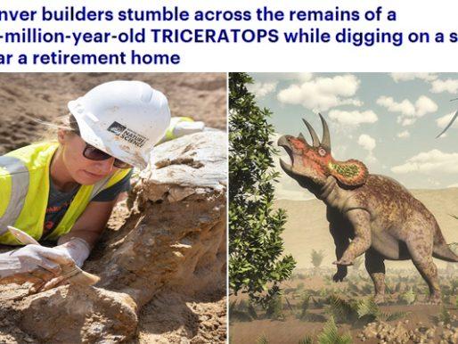 """شاهد .. لحظة العثور على عظام """" ديناصور"""" عاش قبل 68 مليون سنة في """"كولورادو"""" الأمريكية"""