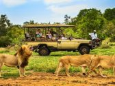 بشرى سارة للسياح السعوديين الراغبين في السفر إلى جنوب إفريقيا
