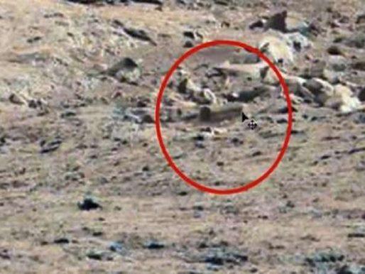 حقيقة العثور على تابوت وآثار فرعونية على كوكب المريخ – فيديو