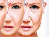 الصدفة تقود علماء لاكتشاف سر وقف الشيخوخة والعودة لسن الشباب