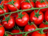 """كيف تحسن """"الطماطم"""" أثناء  تناولها بشكل يومي الخصوبة عند الرجال ؟"""