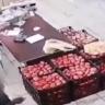 شاهد … تصرف غريب من شخص دهس فاكهة بقدمه بعد شرائها  وتعارك مع البائع !