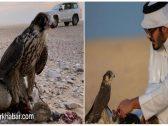 شاهد: شقيق أمير قطر يزور جزيرة أبوموسى الإماراتية التي تحتلها إيران