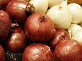 ماهو الفرق بين البصل الأحمر و الأبيض؟.. وأيهما أفضل لصحة الإنسان ؟