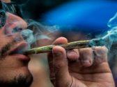 """دراسة """"بالغة الأهمية"""" للرجال عن الحشيش وتدخين الماريغوانا!"""