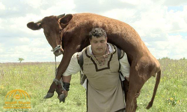 """""""حمل بقرة على كتفيه وتحرك بها""""..  شاهد : أوكراني يُظهر قوته الخارقة بطريقة مختلفة ويبهر الجميع بمهاراته الفريدة"""