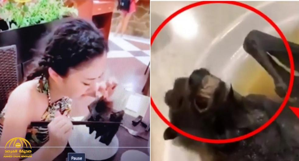 شاهد.. حساء الخفافيش الذي تلتهمة الفتاة وراء انتشار كورونا