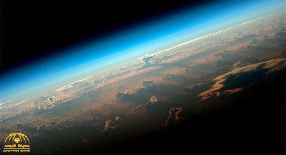 """العلماء يكتشفون """"أصل"""" كل الكائنات على كوكب الأرض !"""