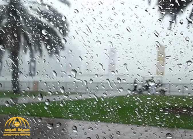 فيروس كورونا.. هل ينتقل عبر المطر؟