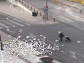 شاهد ماذا فعل الحمام في امرأة وحيدة بأحد شوارع إسبانيا الخالية من المارة بسبب كورونا