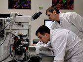 شاهد .. نشر أول صور لفيروس كورونا تحت المجهر