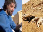 """بعد انهياره عقب """"نفوق"""" كلابه نتيجة تسممها بالرياض .. زاهر سماك يتخذ قرارًا صادمًا: الوداع يا أصدقائي!"""