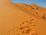 العثور على مواطن  معاق متوفي حرقا داخل مركبته في الصحراء.. والتحقيقات تكشف تفاصيل الواقعة!