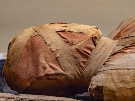 اكتشاف مفاجئ  داخل نعش مومياء مصرية عمرها 3 آلاف عام!