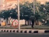 """""""لمحها عن بعد"""".. شاهد: رجل أمن ينقذ طفلة بسرعة البرق قبل أن تصدمها سيارة"""