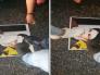 """شاهد.. لبنانيون يدهسون صور """"حسن نصرالله"""" بالأقدام احتجاجا على التطاول على أم المؤمنين السيدة عائشة"""