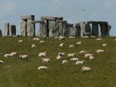 """دراسة تكشف سر  """" الصخور الضخمة"""" التي حيرت العلماء لأكثر من 4 آلاف عام"""