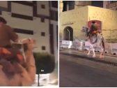 """""""أثار دهشة المارة"""".. شاهد: رجل أمن يتجول في شوارع مكة على ظهر جمل"""
