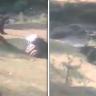 شاهد : دب ضخم يحاول افتراس رجل وعدد من المارة يتدخلون لإنقاذه!