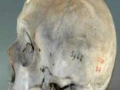 """أسرار """"الجمجمة رقم 5942 """".. الجزائر تكشف مفاجآت عن """"صاحبها"""" المصري المختفي قبل 170 عاما"""